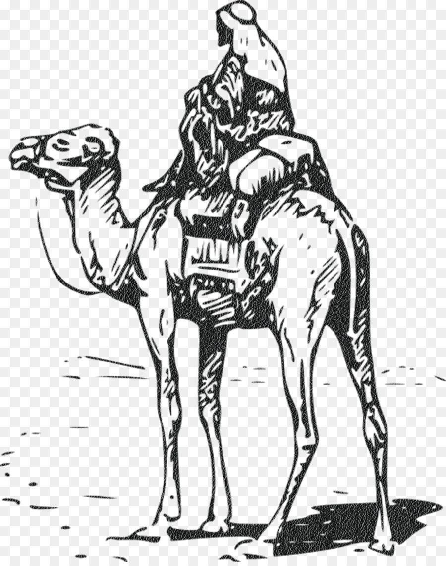 Descarga gratuita de Camello Bactriano, Gráficos Vectoriales Escalables, Libre De Contenido Imágen de Png