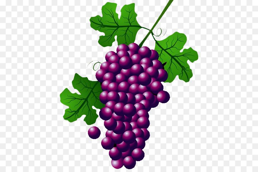 Descarga gratuita de Vino, Común De La Uva De La Vid, Uva Concord Imágen de Png