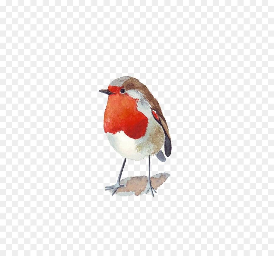 Descarga gratuita de Pájaro, Pintura A La Acuarela, Wren imágenes PNG