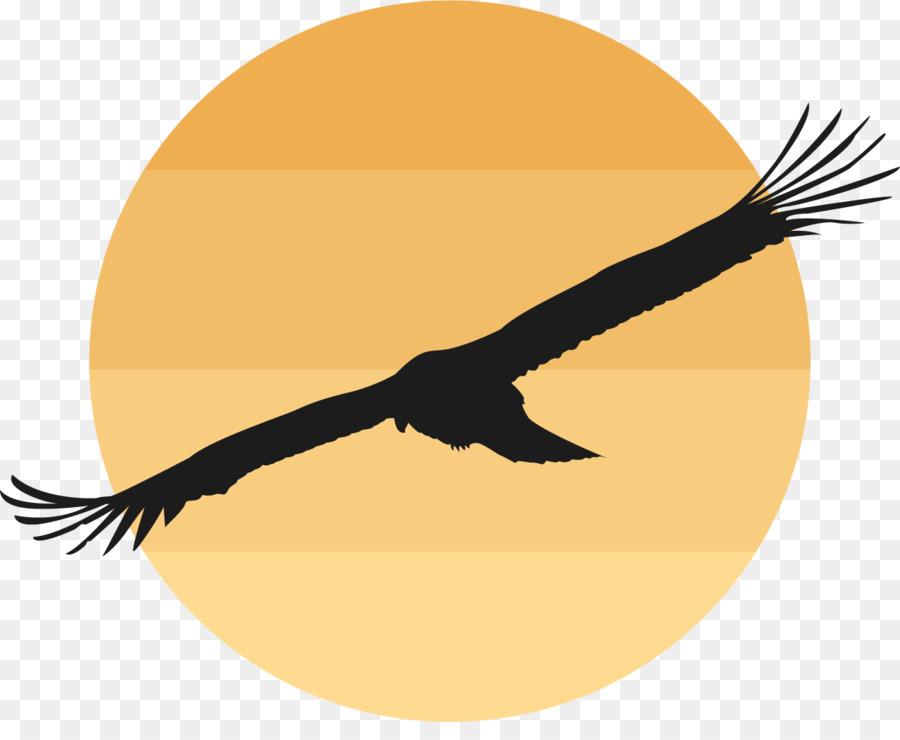 Descarga gratuita de Pájaro, Ganso, Gallina Nacionales imágenes PNG