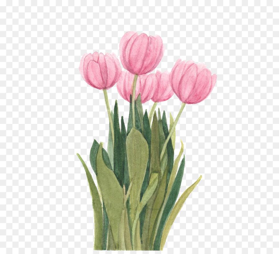 Descarga gratuita de Tulip, Pintura A La Acuarela, Diseño Floral imágenes PNG