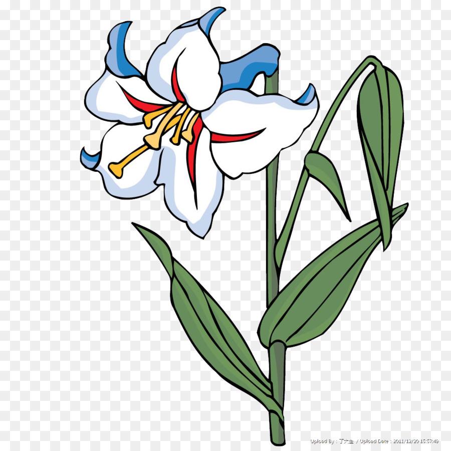 Descarga gratuita de Diseño Floral, Flor, Blanco imágenes PNG
