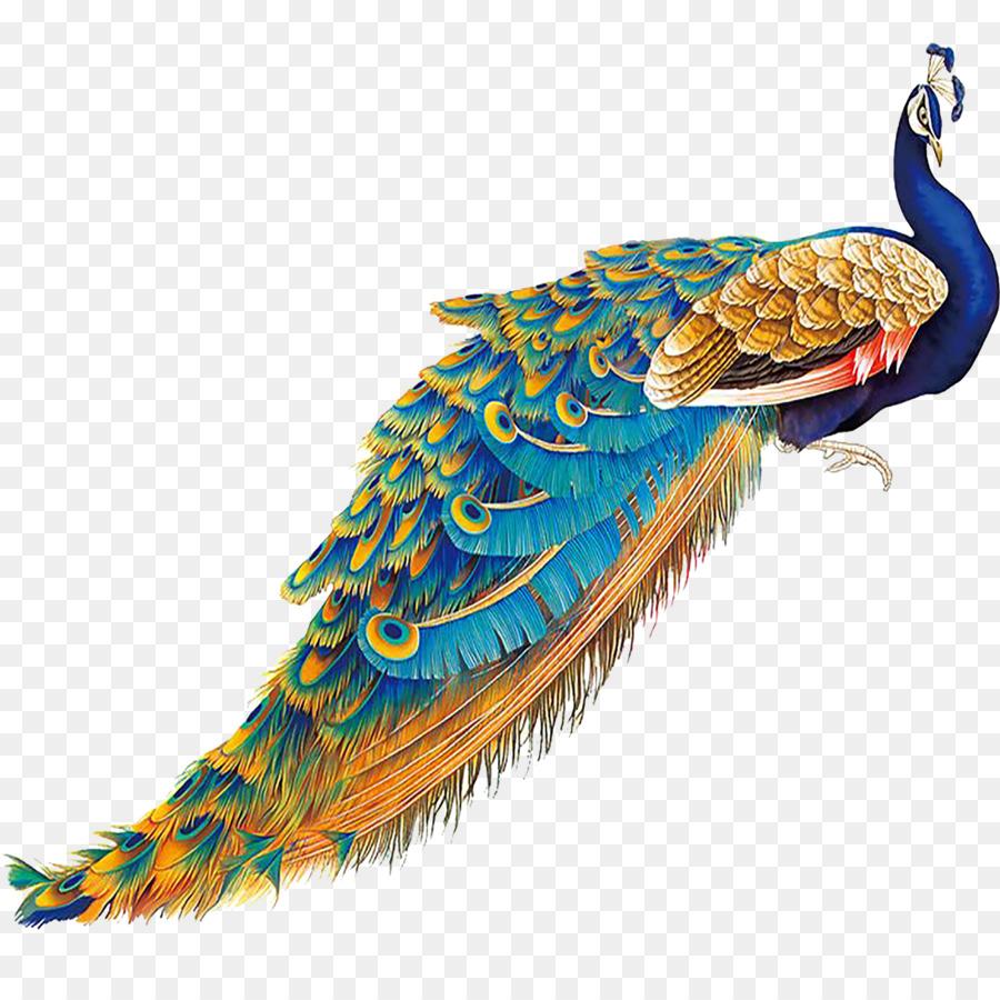 Descarga gratuita de China, Pájaro, Pavo Real imágenes PNG