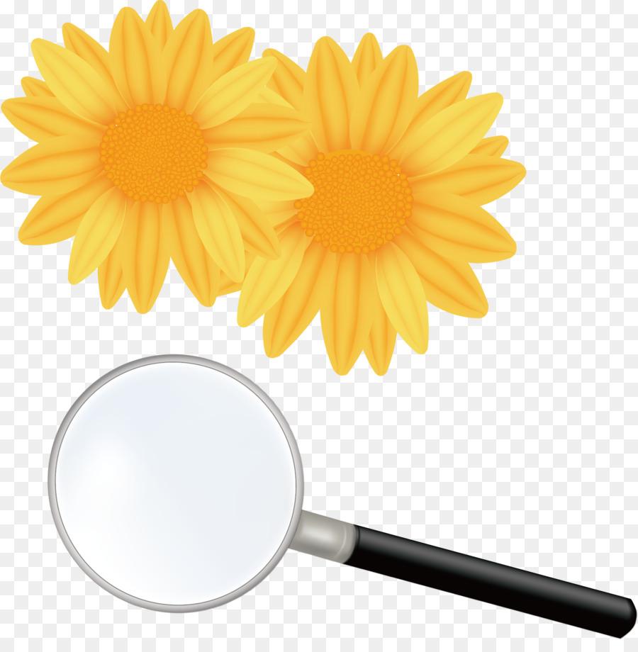 Descarga gratuita de Flor, Royaltyfree, Shutterstock imágenes PNG