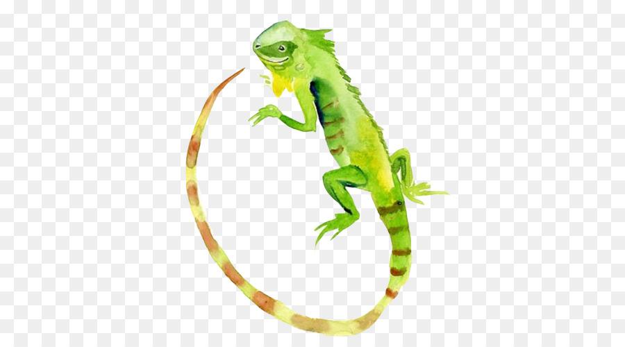 Descarga gratuita de Lagarto, Acuarela De Flores, Iguana Verde imágenes PNG