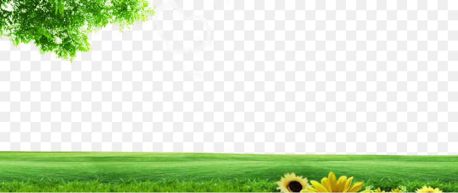 Descarga gratuita de Césped, La Energía, Pastizales imágenes PNG