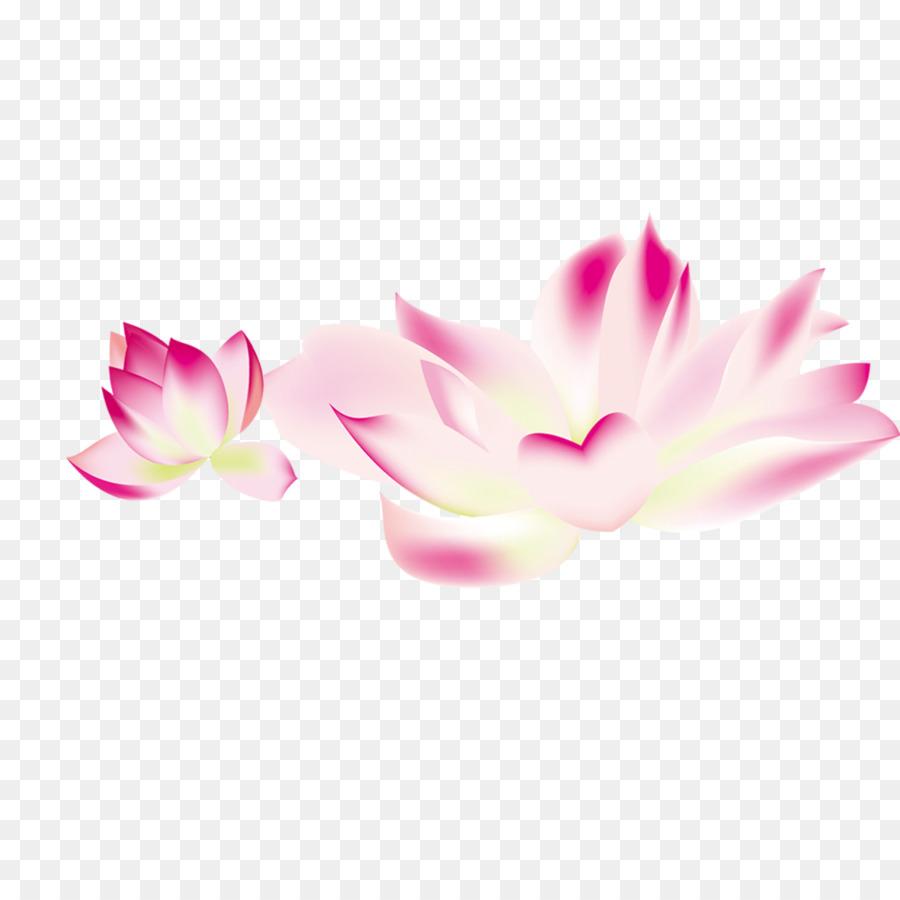 Descarga gratuita de Flor, Descargar, Pétalo Imágen de Png