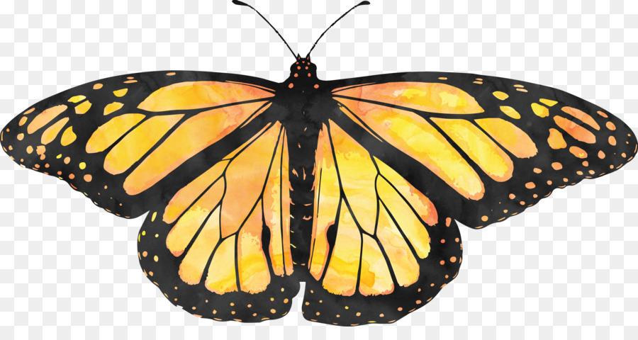 Descarga gratuita de La Reserva De La Biosfera De La Mariposa Monarca, Santuario De La Mariposa Monarca, Mariposa imágenes PNG