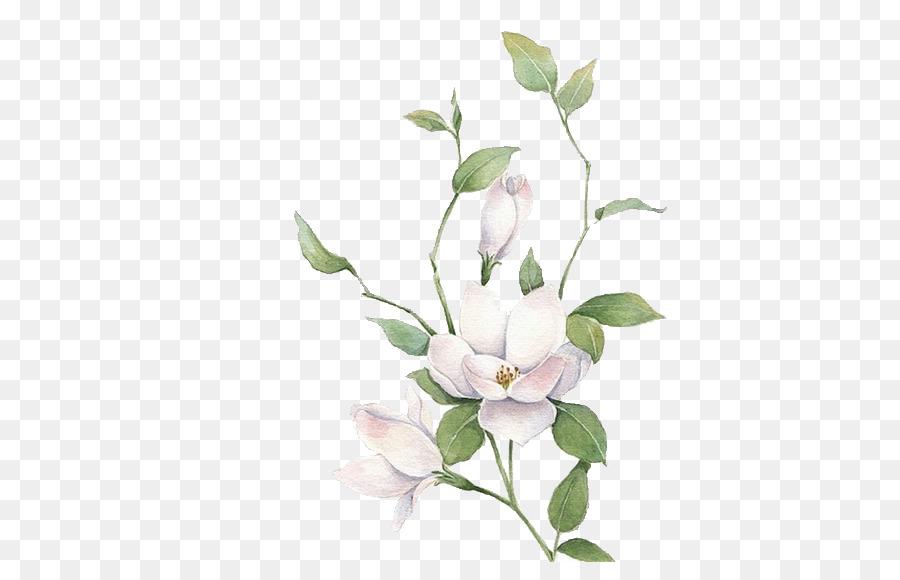 Jazmin Mo Li Hua Flores Blancas
