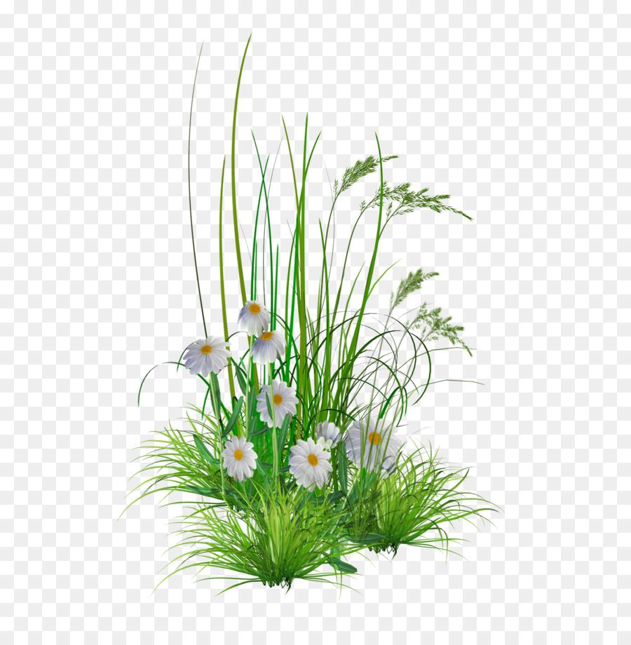 Descarga gratuita de Jardín De Flores, Jardín, Césped imágenes PNG
