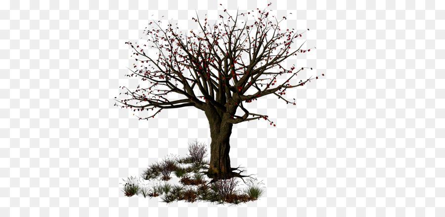 Descarga gratuita de árbol, Iconos De Equipo, La Navidad Imágen de Png