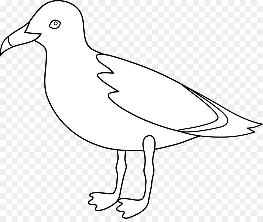 Descarga gratuita de Las Gaviotas, Pájaro, Dibujo Imágen de Png
