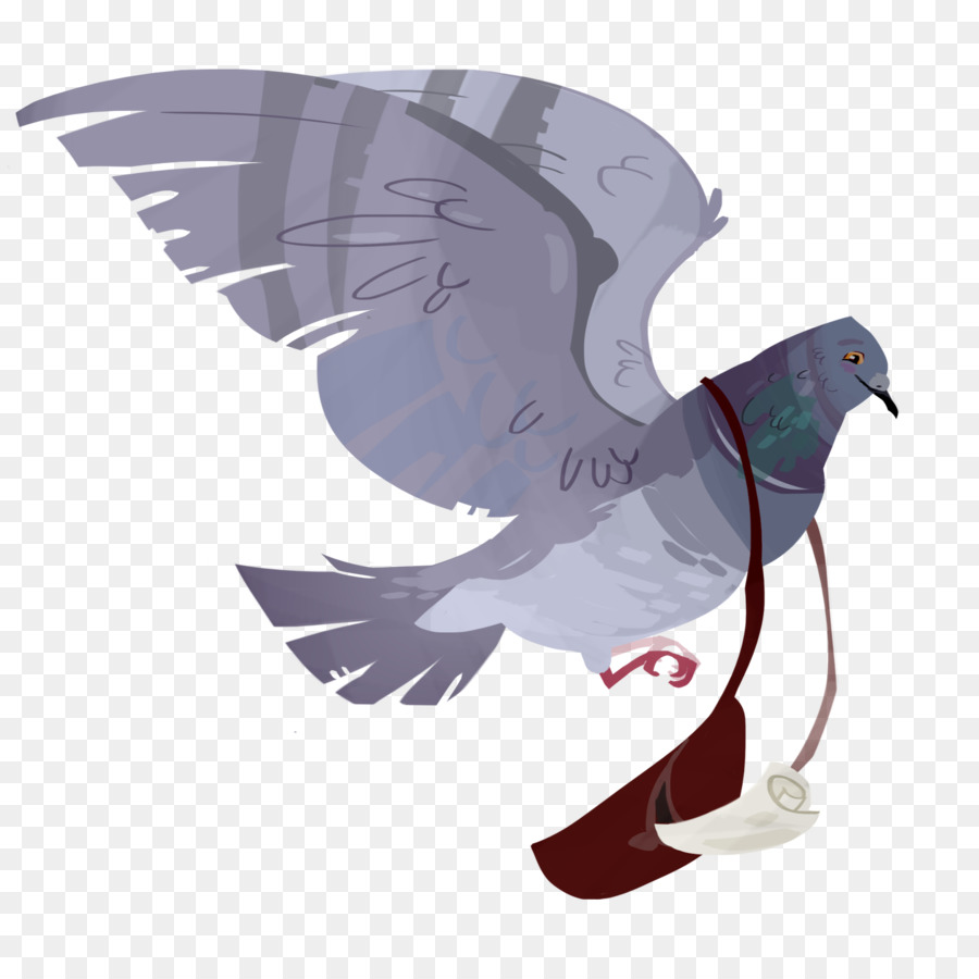 Descarga gratuita de Inglés Paloma Mensajera, Homing Pigeon, Columbidae Imágen de Png