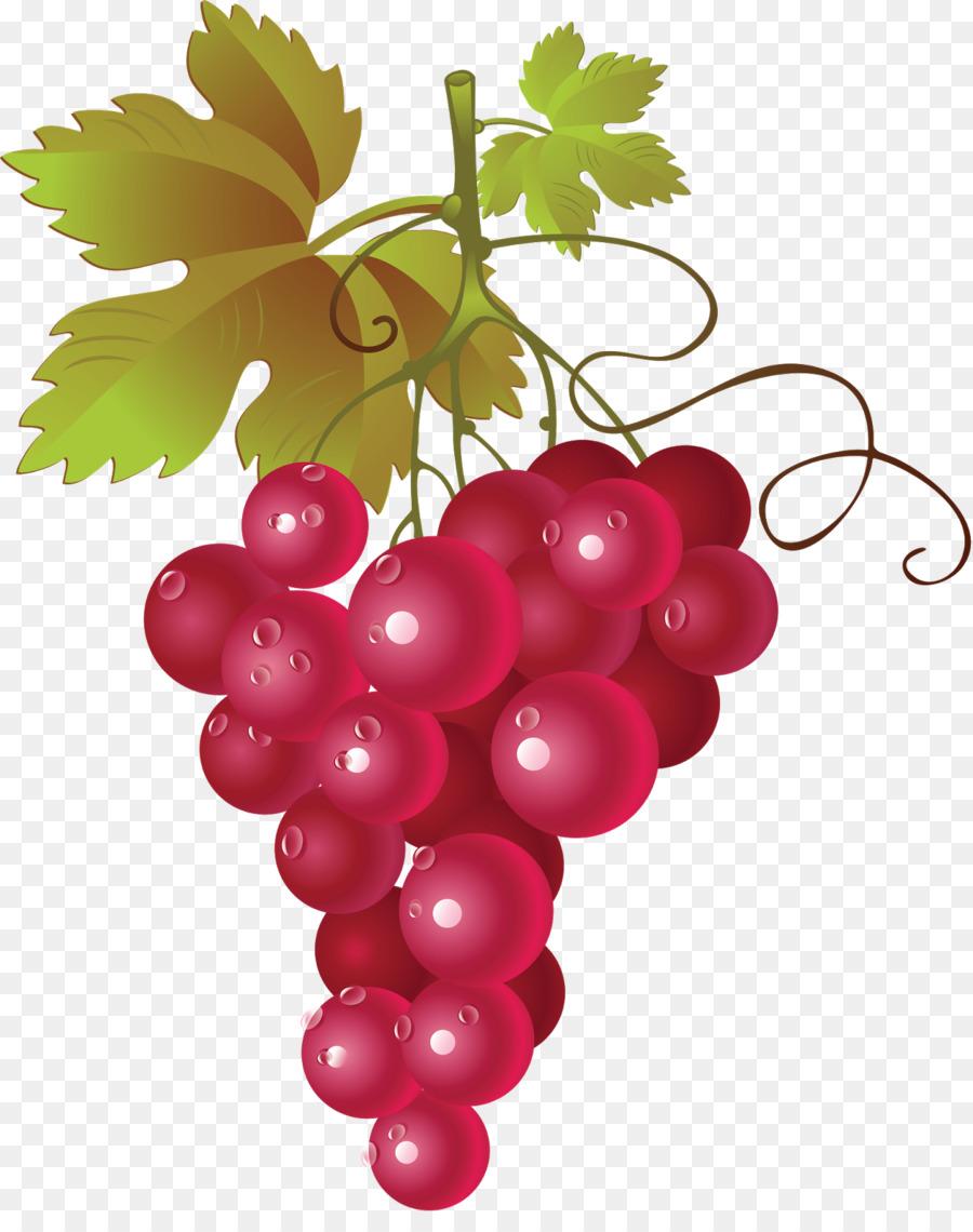 Descarga gratuita de Vino Tinto, Común De La Uva De La Vid, Vino Imágen de Png