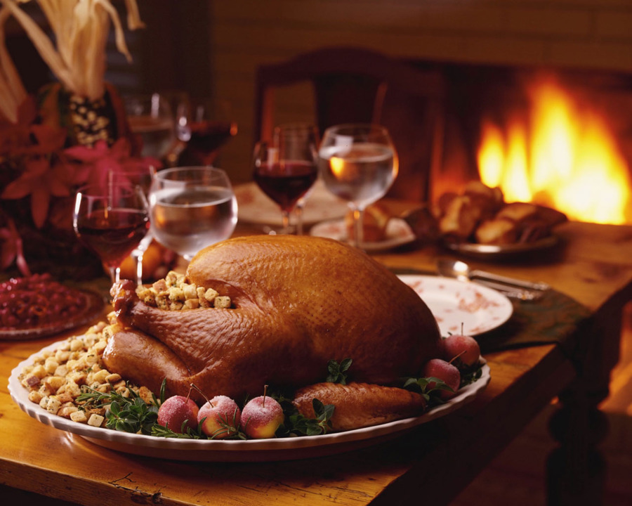 Descarga gratuita de Día Festivo, Turquía, Día De Acción De Gracias Imágen de Png
