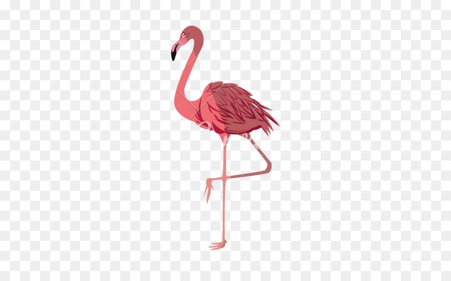 Descarga gratuita de Flamingo, Royaltyfree, La Fotografía Imágen de Png