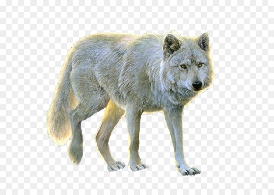 Descarga gratuita de Perro, Tundra De Alaska Lobo, Descargar imágenes PNG