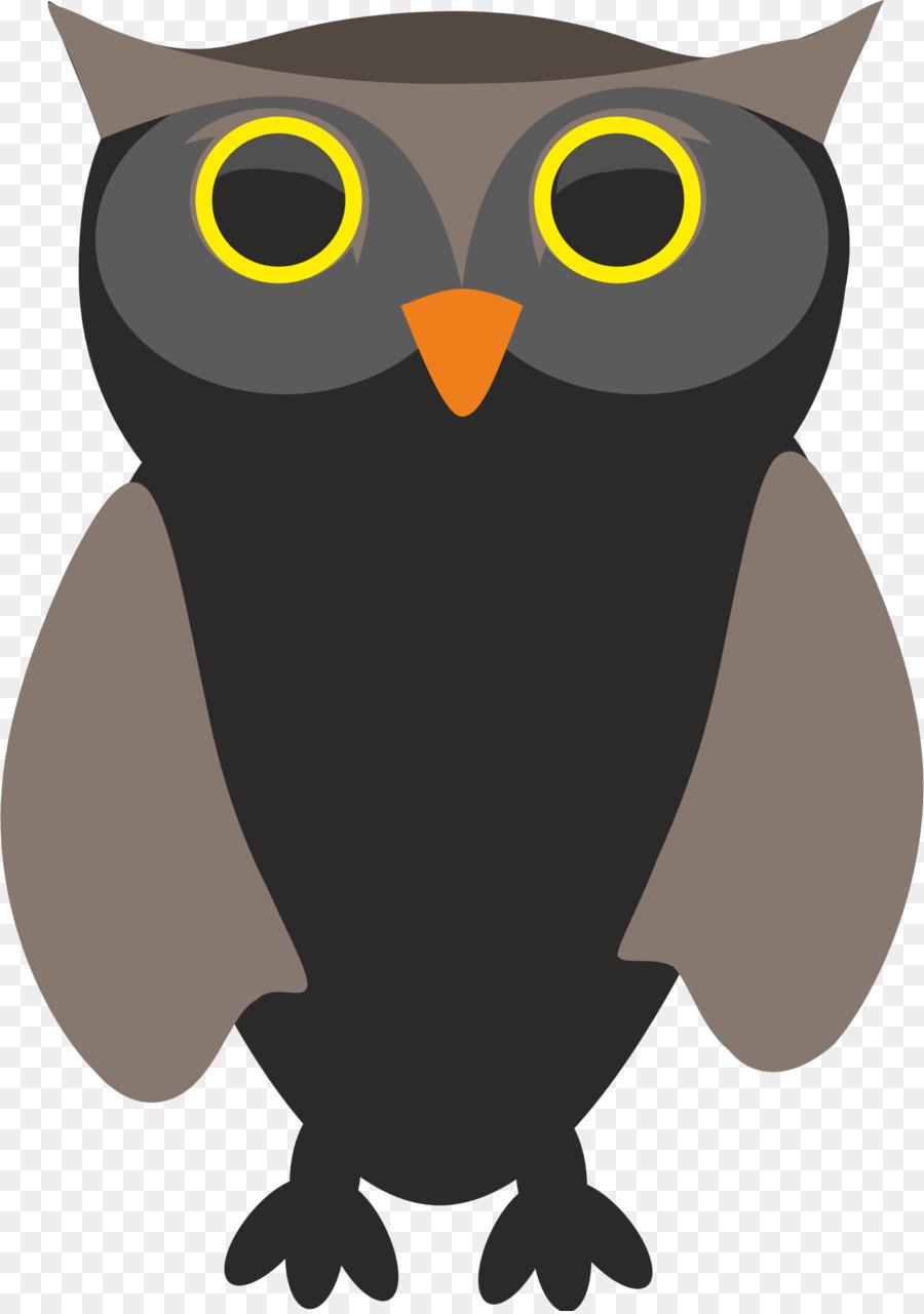 Descarga gratuita de Pájaro, Búho, Pico Imágen de Png