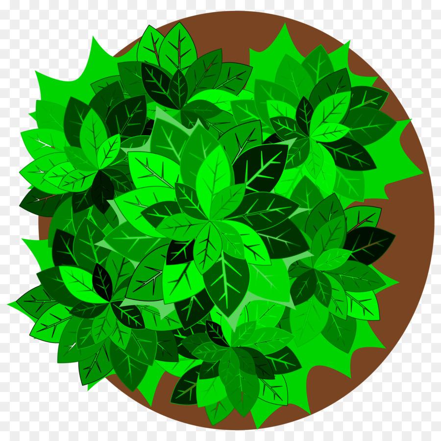 Descarga gratuita de árbol, Planta, Castaños De Indias imágenes PNG