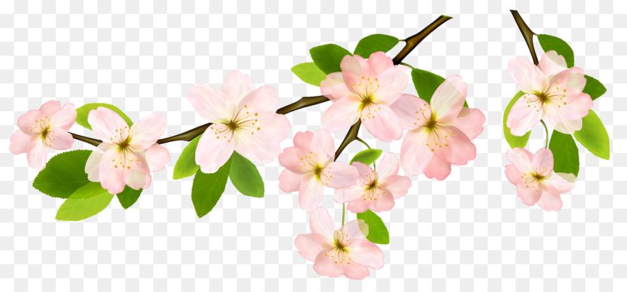 Descarga gratuita de Rama, Flor, La Primavera Imágen de Png