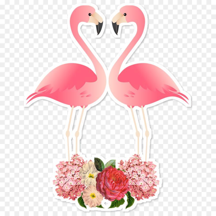 Descarga gratuita de Los Flamencos, Pájaro, Papel imágenes PNG