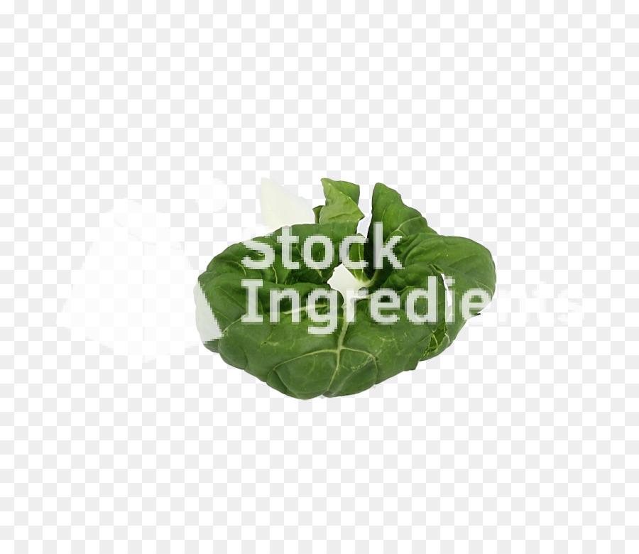 Descarga gratuita de Hoja, Hoja Vegetal, De Plástico imágenes PNG