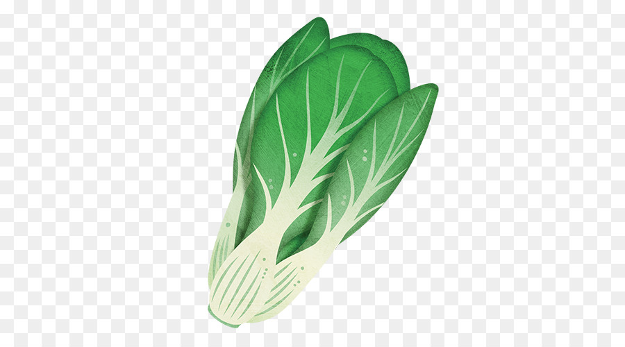 Descarga gratuita de Bok Choy, Vegetal, Hoja Vegetal imágenes PNG