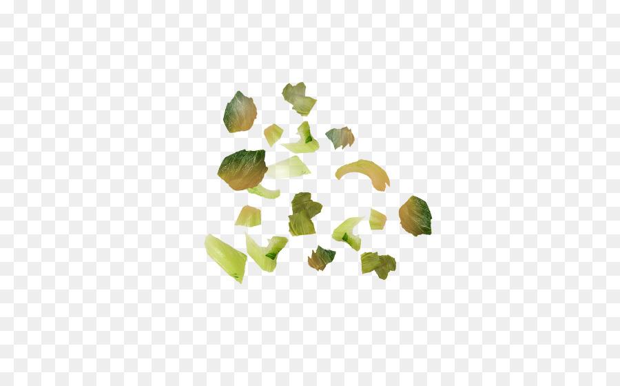 Descarga gratuita de Hoja, Pétalo, árbol imágenes PNG