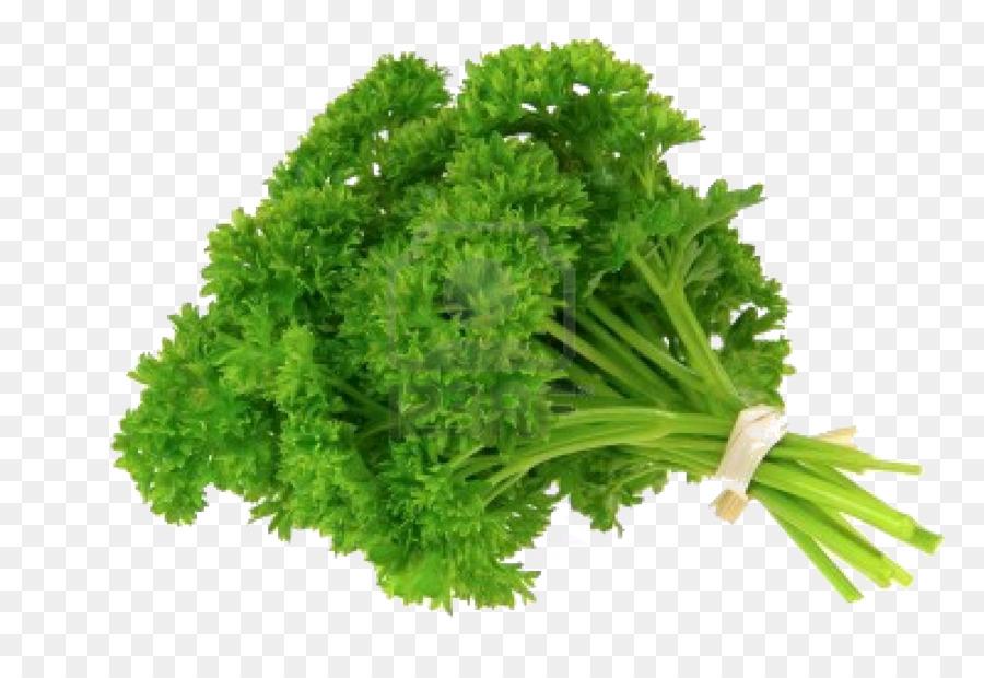Descarga gratuita de Perejil, Alimentos Orgánicos, Hierba Imágen de Png