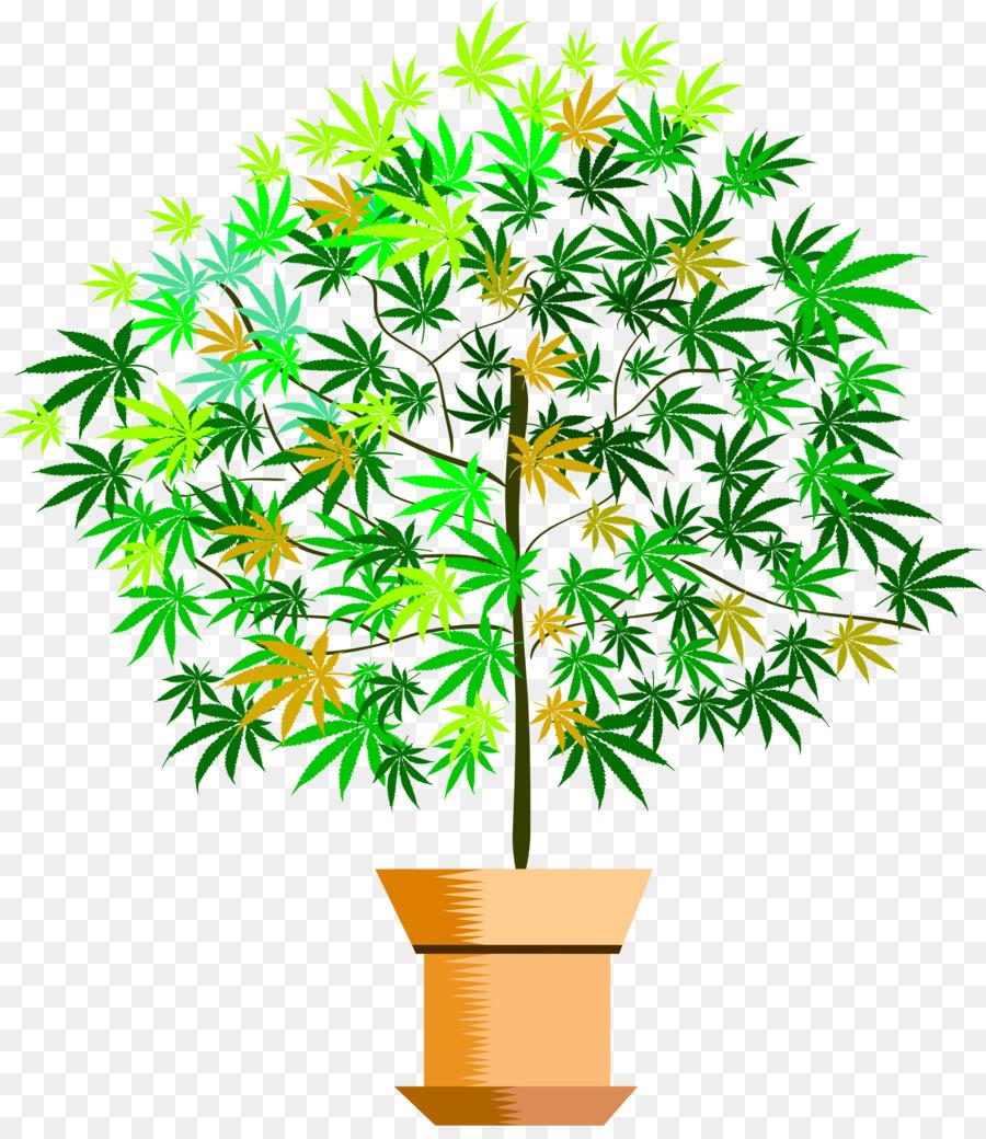 Descarga gratuita de Planta, Maceta, Dominio Público Imágen de Png