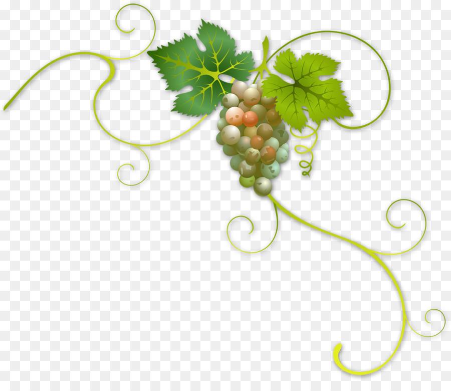 Descarga gratuita de Vino, Común De La Uva De La Vid, Uva Imágen de Png