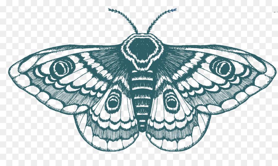 Descarga gratuita de Mariposa, Dibujo, Camiseta imágenes PNG