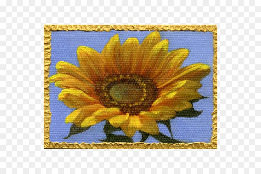 Descarga gratuita de Común De Girasol, La Semilla De Girasol, Flor Imágen de Png