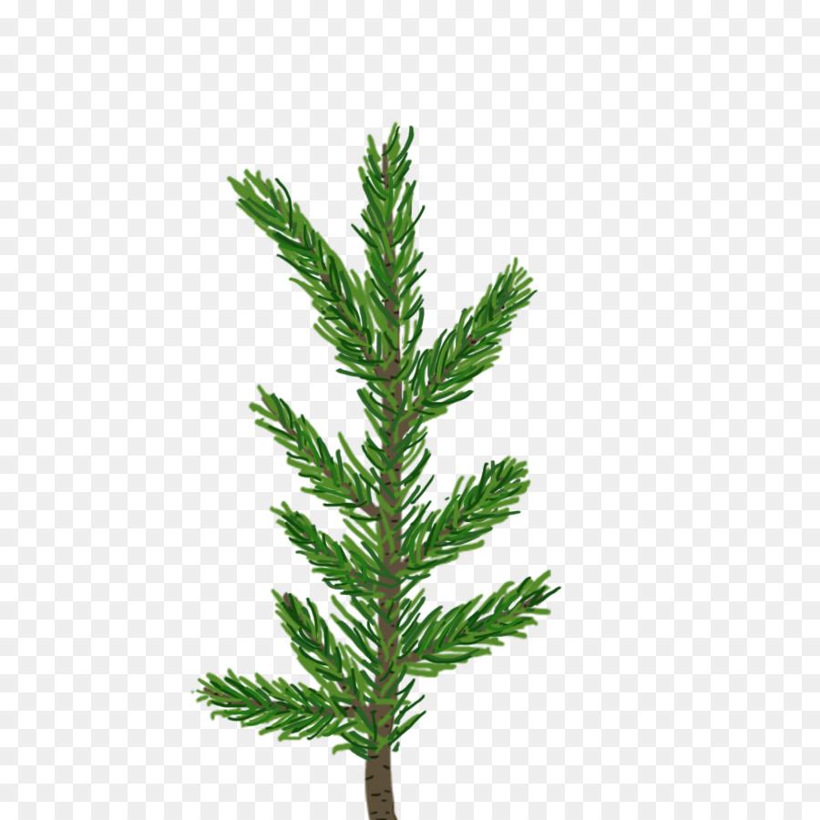 Descarga gratuita de Pino, árbol, Fir Imágen de Png