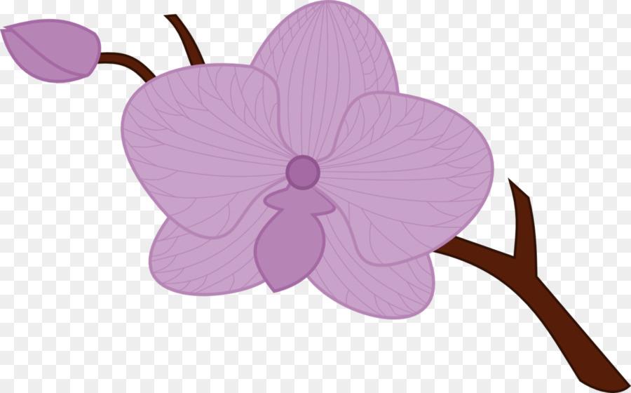 Descarga gratuita de Dibujo, Las Orquídeas, La Polilla De Las Orquídeas imágenes PNG