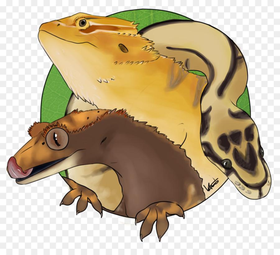 Descarga gratuita de Reptiles, Pájaro, Animal Imágen de Png