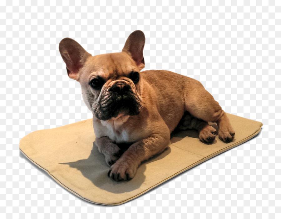 Descarga gratuita de Bulldog Francés, Bulldog, Toy Bulldog Imágen de Png