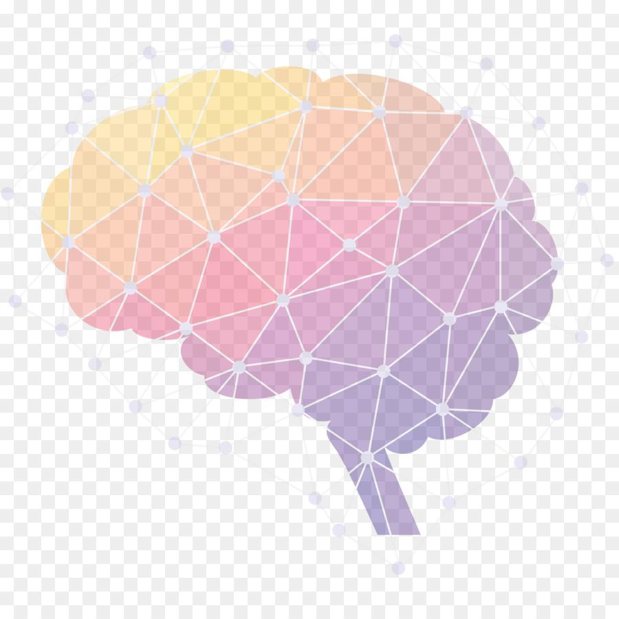Descarga gratuita de Cerebro, El Cerebro Humano, La Neurociencia imágenes PNG