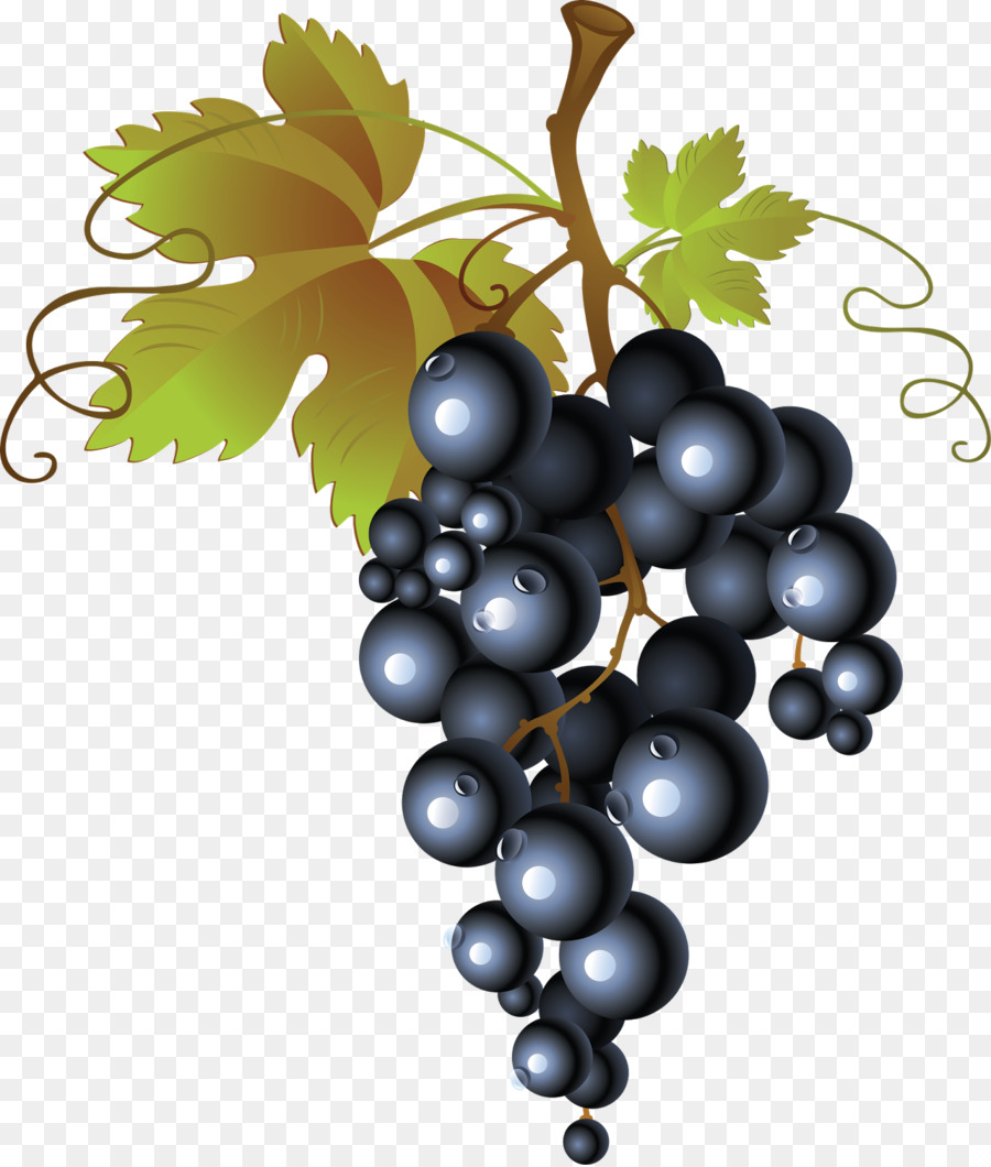Descarga gratuita de Común De La Uva De La Vid, Vino, Smoothie Imágen de Png