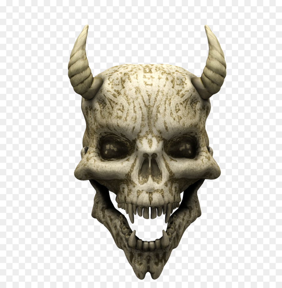 Descarga gratuita de Hueso, Cráneo, Esqueleto Imágen de Png