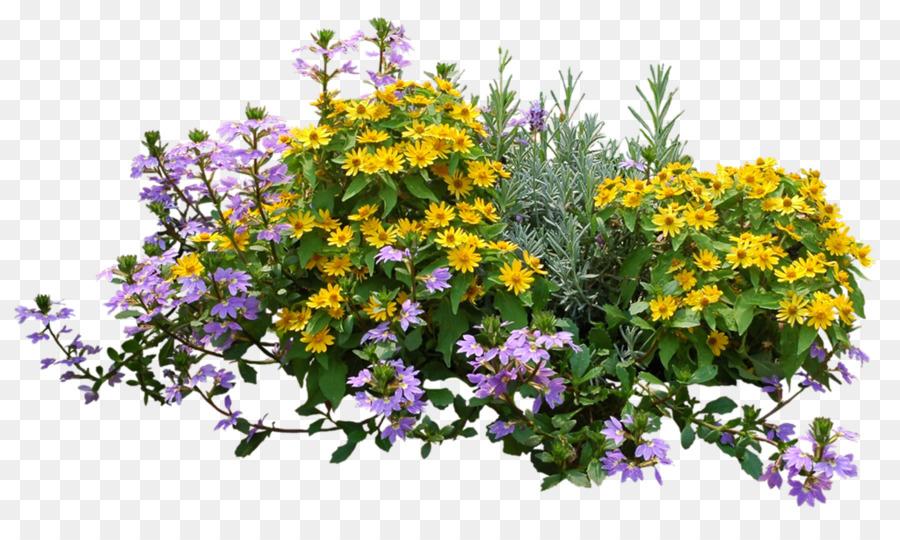 Descarga gratuita de Arbusto, Flor, Jardín De Flores imágenes PNG