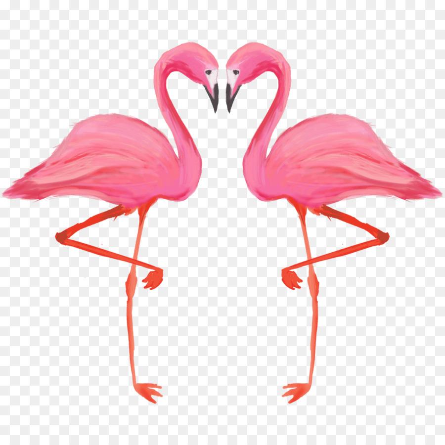 Descarga gratuita de Pájaro, Flamenco, American Flamingo Imágen de Png