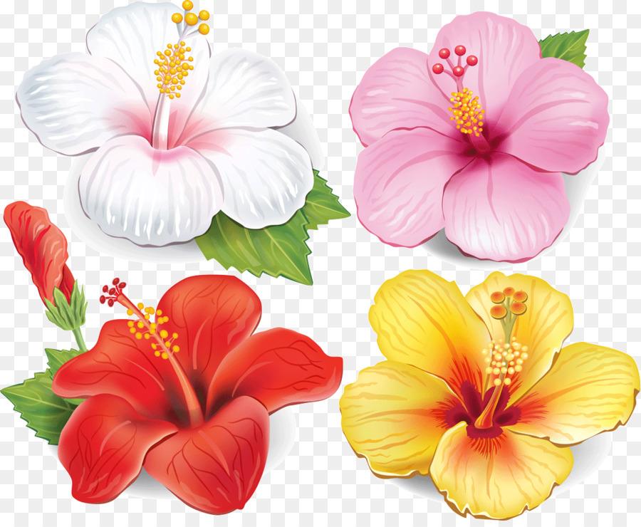 Descarga gratuita de Flor, Dibujo, Postscript Encapsulado Imágen de Png