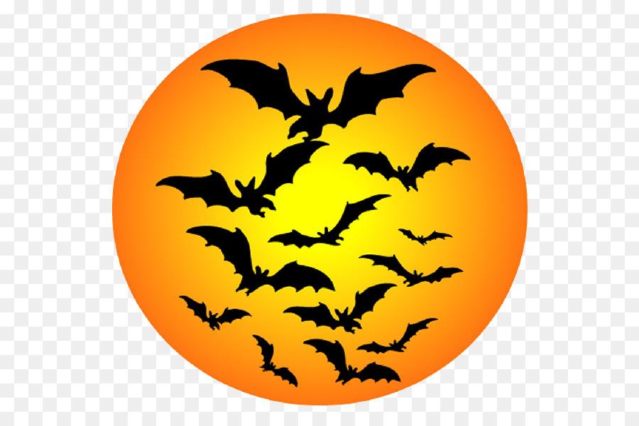 Descarga gratuita de Bat, Youtube, Iconos De Equipo Imágen de Png
