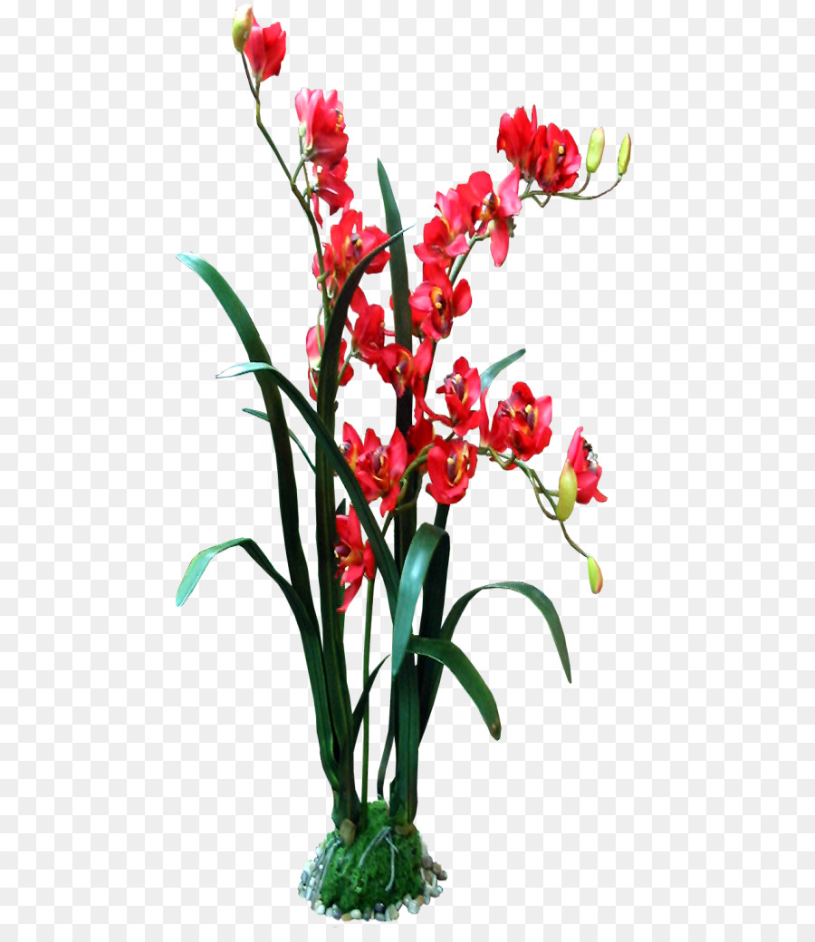 Descarga gratuita de Flor, Las Flores Cortadas, Las Imágenes De Google Imágen de Png