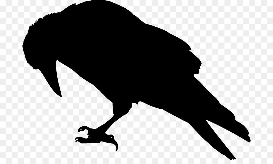 Descarga gratuita de Torre, Común Raven, Pájaro imágenes PNG