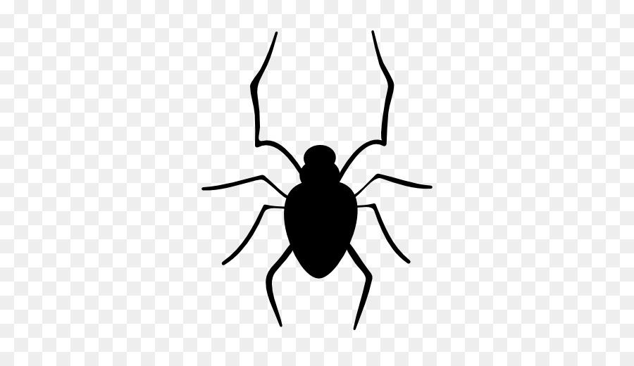 Descarga gratuita de Araña, Dibujo, Iconos De Equipo Imágen de Png