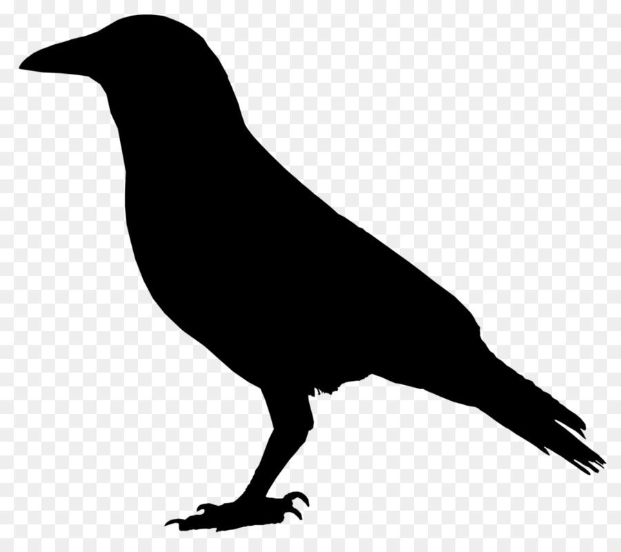 Descarga gratuita de Los Cuervos, Dibujo, Raven imágenes PNG