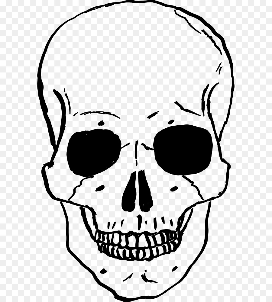 Descarga gratuita de Cráneo, Esqueleto Humano, Dibujo Imágen de Png