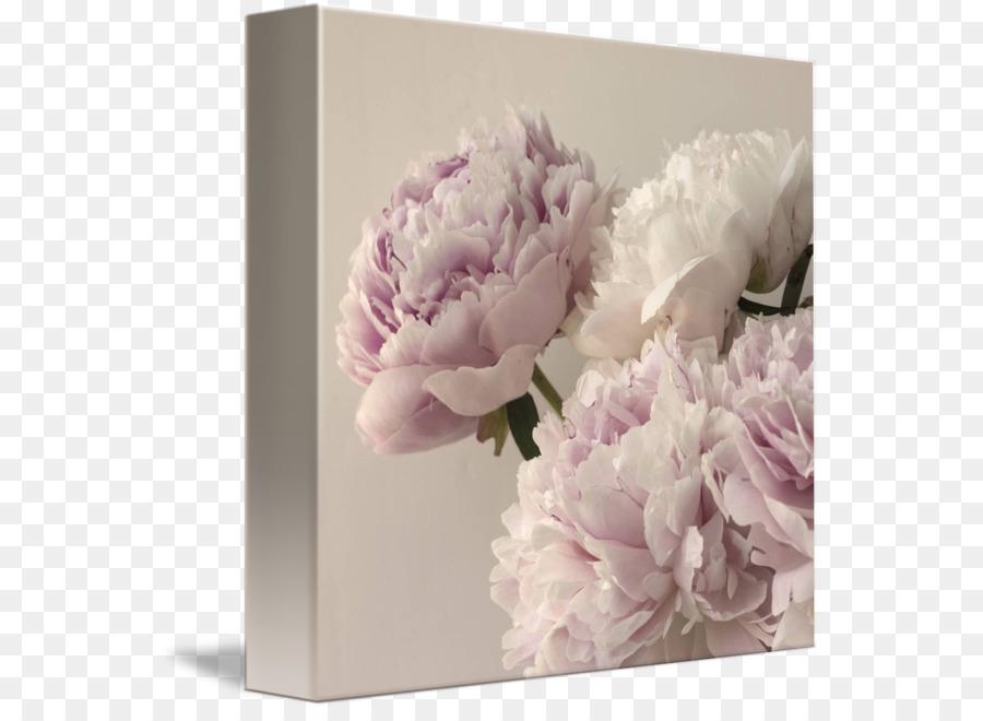 Descarga gratuita de Peonía, Diseño Floral, Flor imágenes PNG